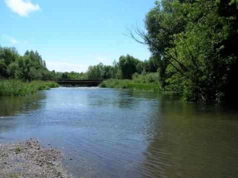 Федеральный бюджет дал Рязанской области 15 млн на расчистку реки Хупты в Ряжске 1_2413