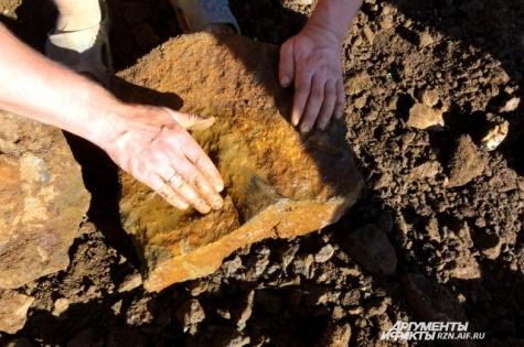 В Рязанской области обнаружены первые в России останки плиозавра