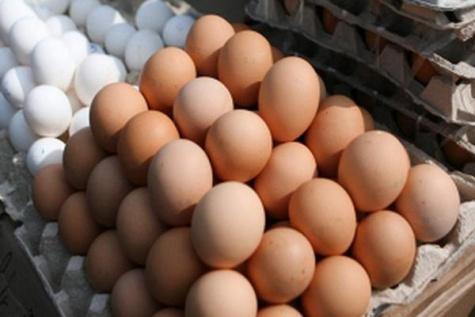 Правительство Рязанской области выступило с официальным заявлением: у нас дешевые яйца 1_2822